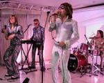 Jive Disco Show